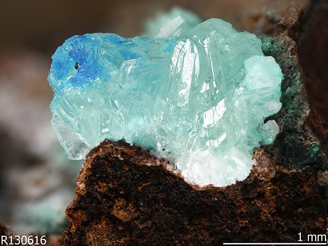 Simonkolleit, ein bläuliches Mineral