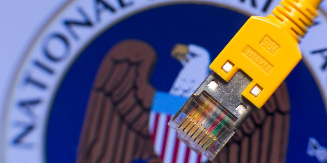 Ein Stecker eines Netzwerkkabels vor einem Monitor, auf dem das Logo der US-amerikanischen National Security Agency (NSA) zu sehen ist.