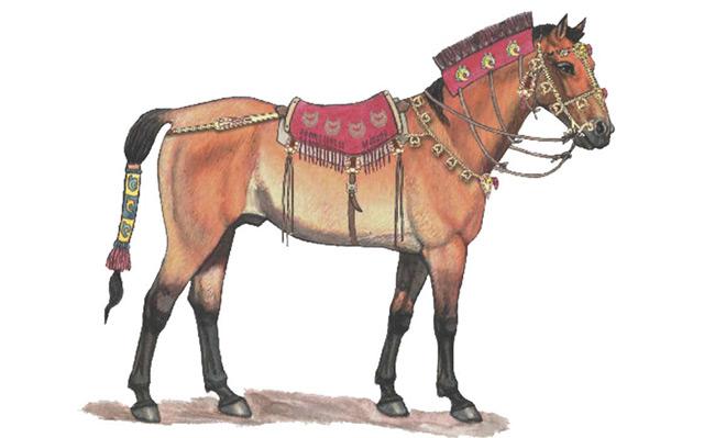 Illustration: So könnte ein Pferd der Skythen vor 2.300 Jahren ausgesehen haben