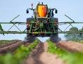 Ein Landwirt düngt mit seinem Traktor ein Erdäpfelfeld.