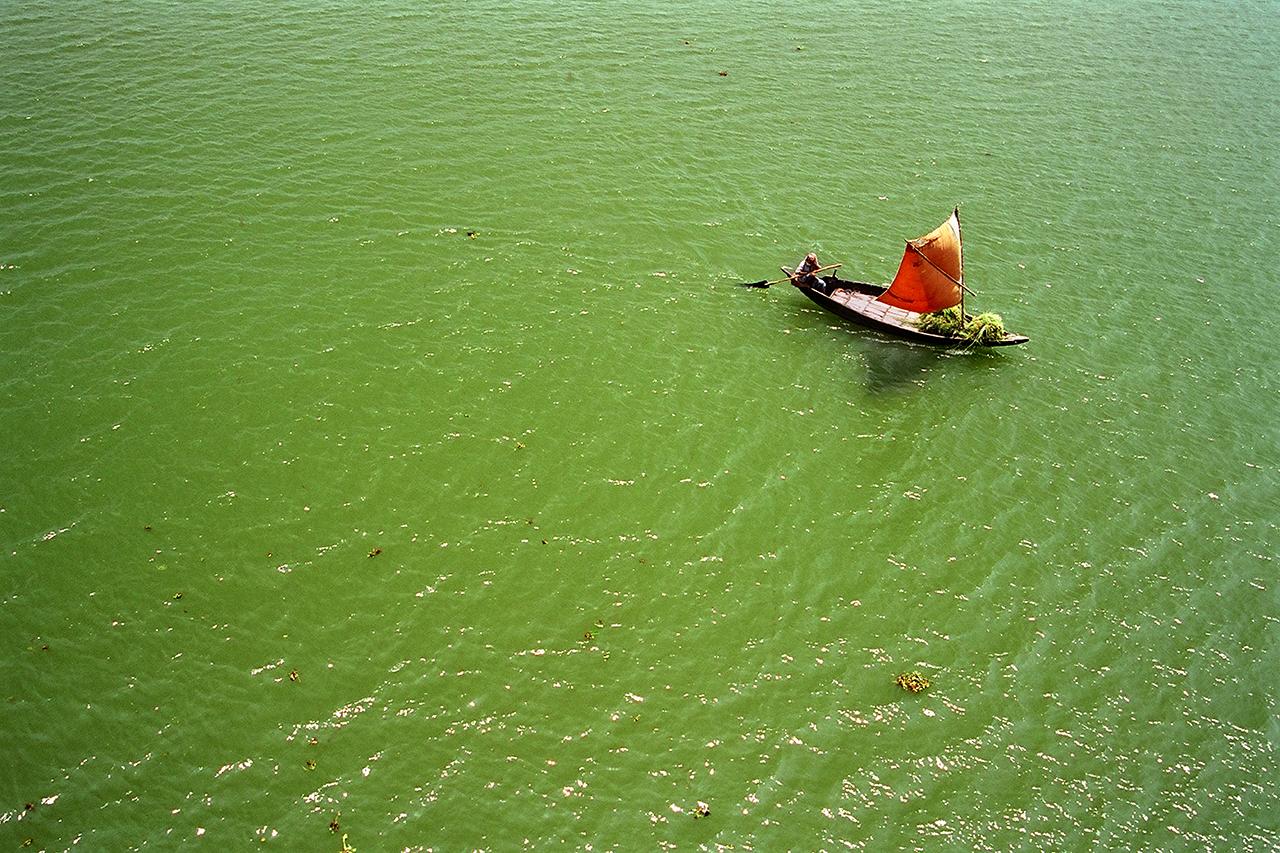 Ein Mann rudert mit einem kleinen Boot durch einen grüngefärbten Fluss in Bangladesh.