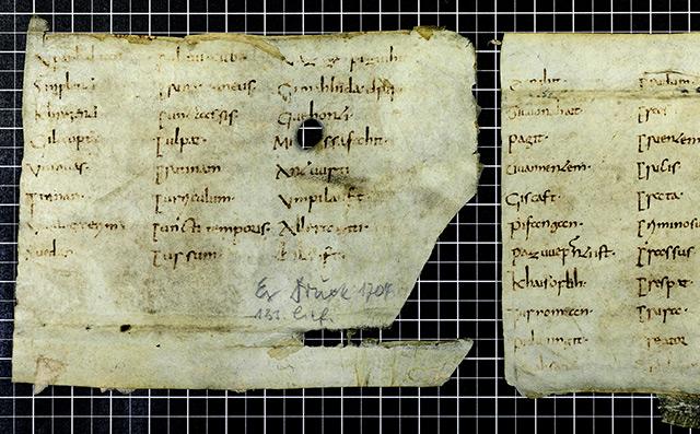 frühmittelalterlichen Pergamentfragmente aus dem Stift Admont