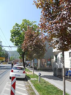 Eggenberger Allee, Graz