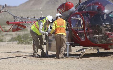 US-Army-Helikopter verfrachtet die Tiere aus der Gefahrenzone