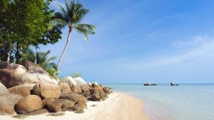 Palmenstrand auf Ko Samui