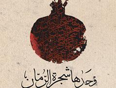"""Cover des Buchs """"Nur der Granatapfelbaum"""""""