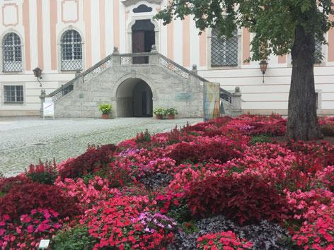Ökumenische Sommerakademie Kremsmünster 2017 Klimawandel Blumenschau Ökologie