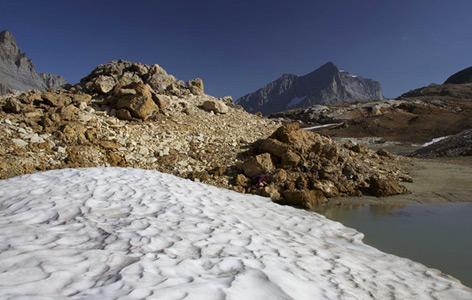 Fundort Lötschenpass in den Berner Alpen