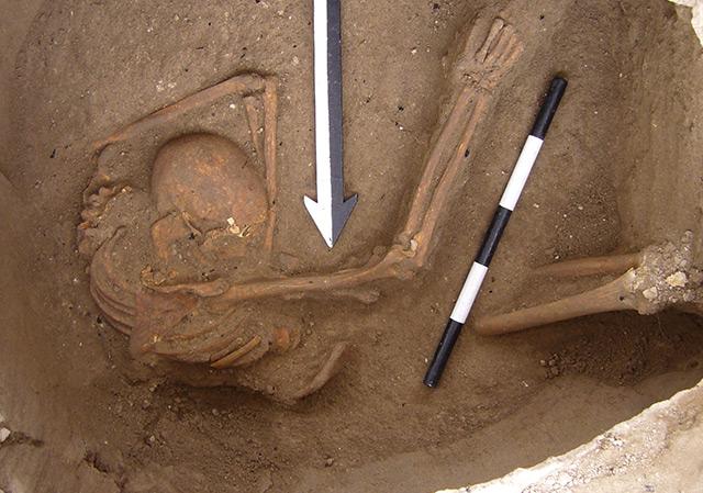 Eines der in Sidon ausgegrabenen Kanaaniter-Skelette