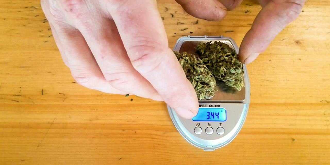 CBD-haltiges Cannabiskraut auf einer Waage