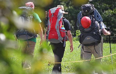 Drei Wanderer von hinten beim Wandern