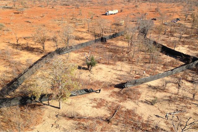 """Boma, der traditionelle Trichter zum Eintreiben und Sammeln der Tiere, an deren spitzen Ende der Lkw als einziger """"Fluchtweg"""" steht"""