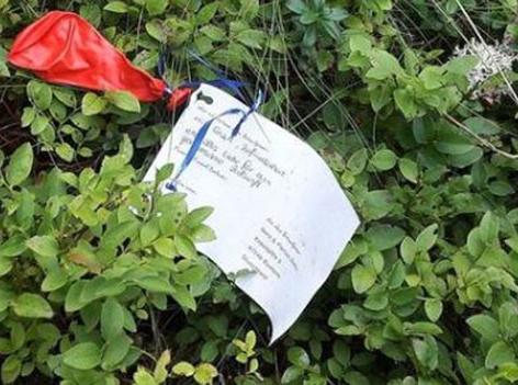 Roter Ballon im Gebüsch mit Nachricht