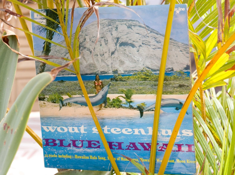 Plattencover von Blue Hawaii