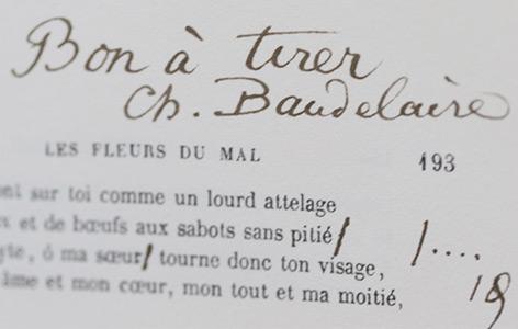 "Anmerkungen Baudelaires in seinem berühmten Buch ""Les Fleurs du Mal"""