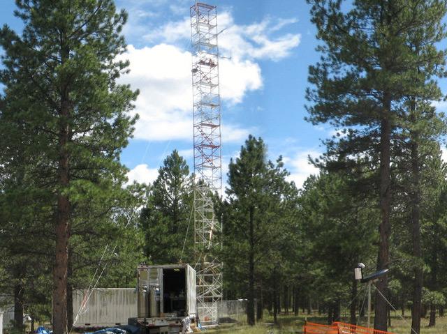 Waldgebiet in den Rocky Mountains mit dem 26 Meter hohen Messturm