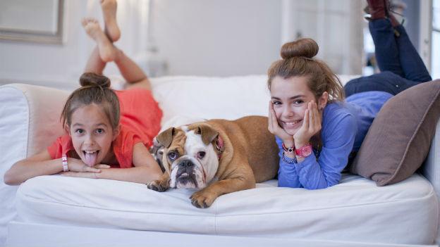 Tiere im Schlafzimmer lassen uns besser schlafen