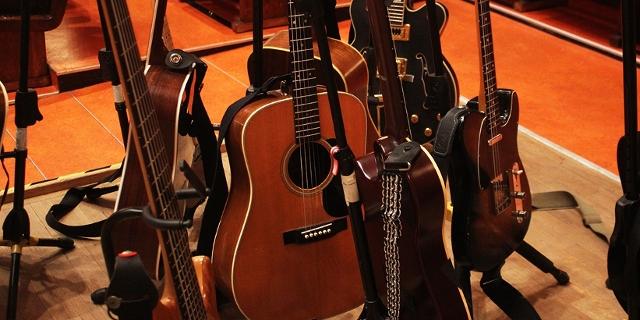 Fink Gitarren