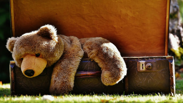 Teddy klettert aus Koffer