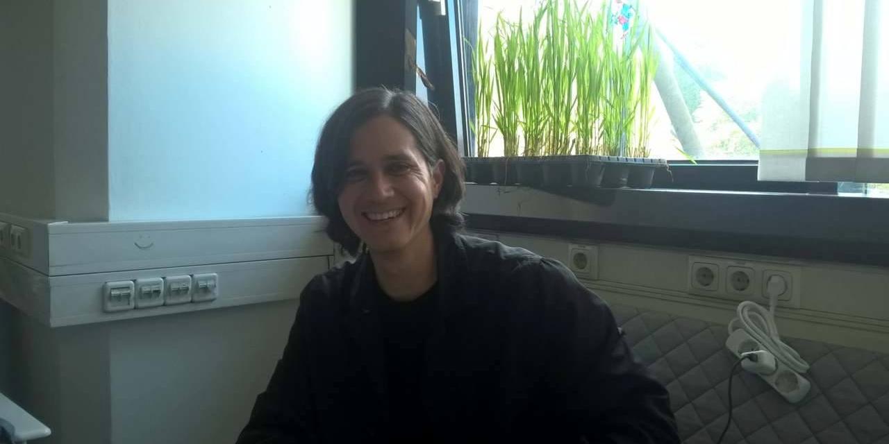 Kenric McDowell in Linz