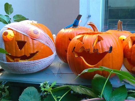 Verzierte Halloween-Kürbisse