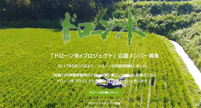 Drohne schwebt über Reisfeld