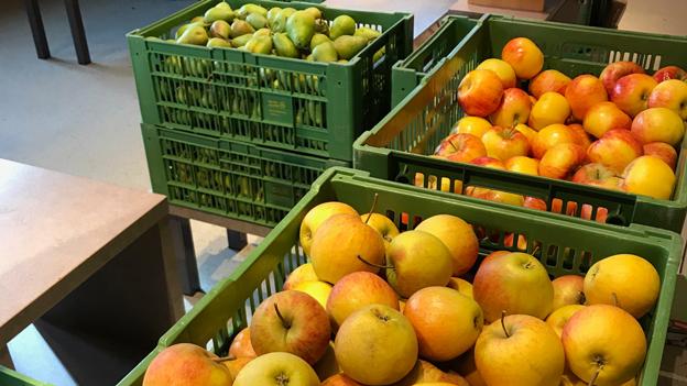 Trotz Frost genug österreichische Äpfel
