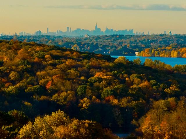 Die Skyline von New York aus der Ferne, Blick über Wälder