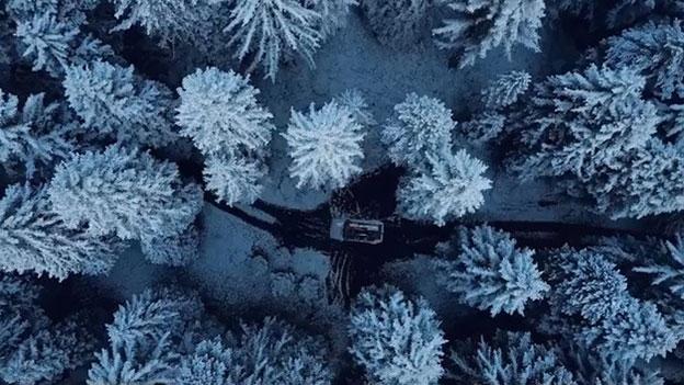 """Videoausschnitt aus Musikvideo zu """"Perfect"""": Wald von oben"""