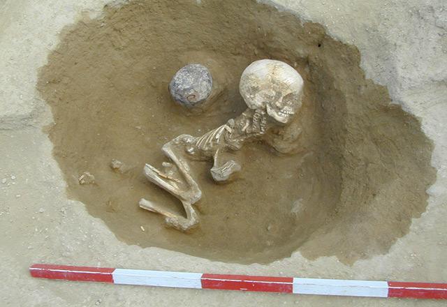 Fundstätte Balatonszarszo in Ungarn: Neolithische Gebeine, deren DNA untersucht wurde