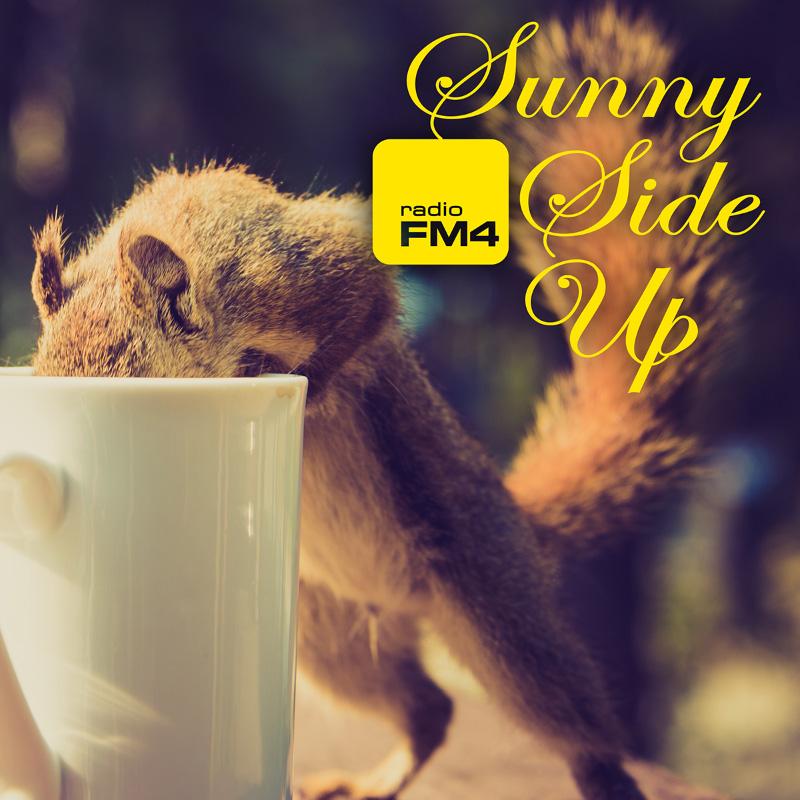 Sunny Side Up Eichhörnchen-Cover