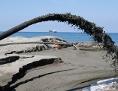 Sandgewinnung am Meer