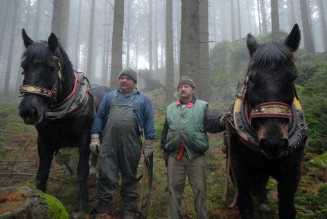 Wilde Reise mit Erich Pröll  Pferdemenschen (1)