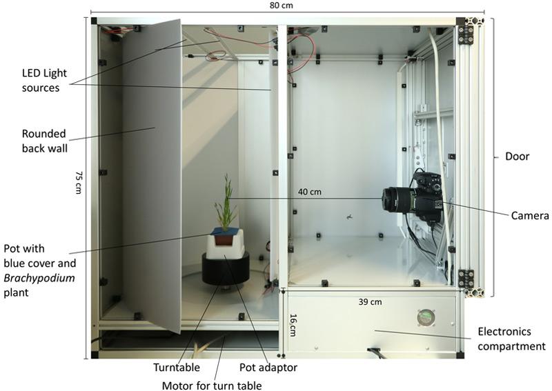 Untersuchungseinheit für Pflanzen