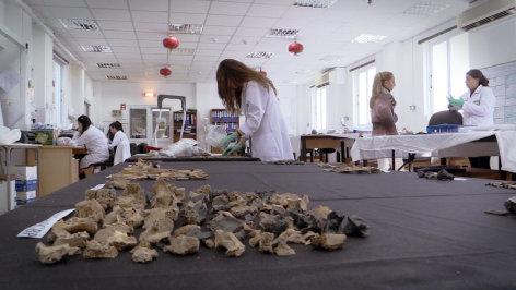 Im Brennpunkt  Die Verschollenen des Zypernkonflikts  Originaltitel: Ghosts of Cyprus