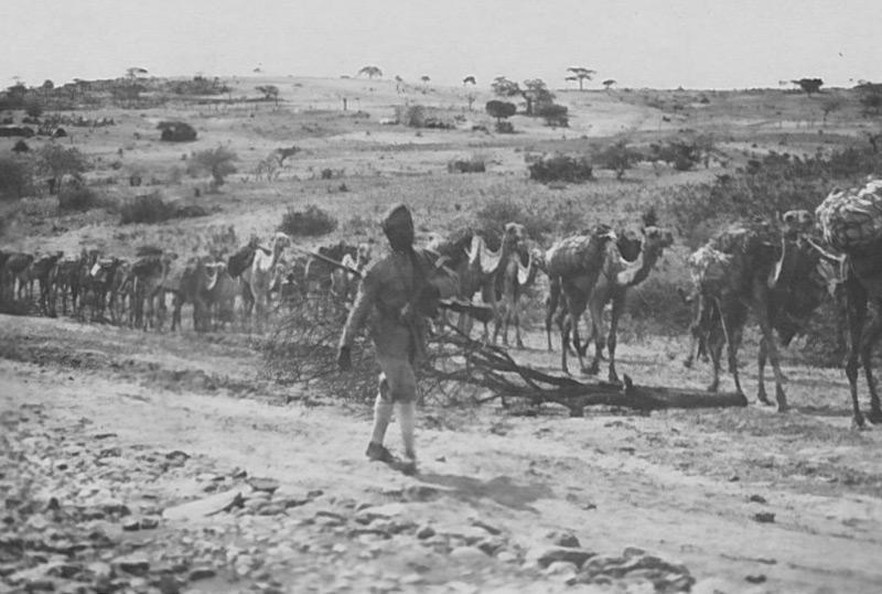 Ein 'exotisches' Abenteuer: eine Kamelkolonne zieht durch Ostafrika begleitet von einem Askari (Soldat aus Eritrea im Dienste der italienischen Kolonialmacht)