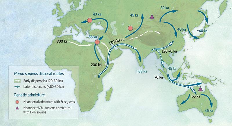 Wanderungen von Homo sapiens