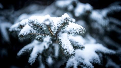Weiße Weihnachten, Schnee im Winter