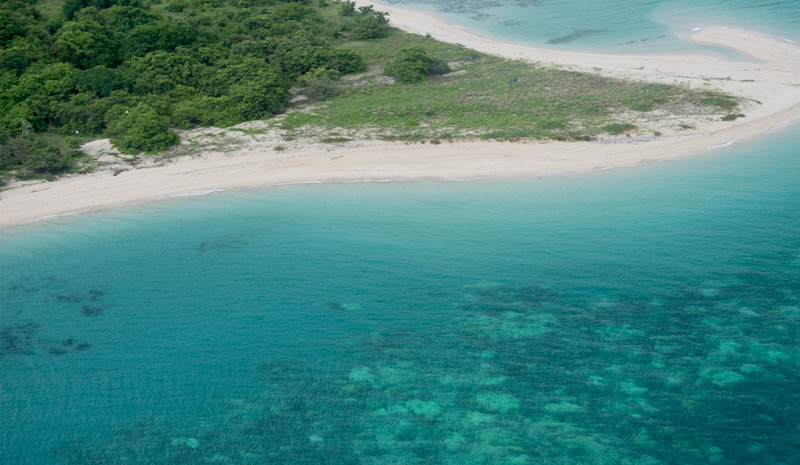 Korallenriff vor der australischen Kap-York-Halbinsel