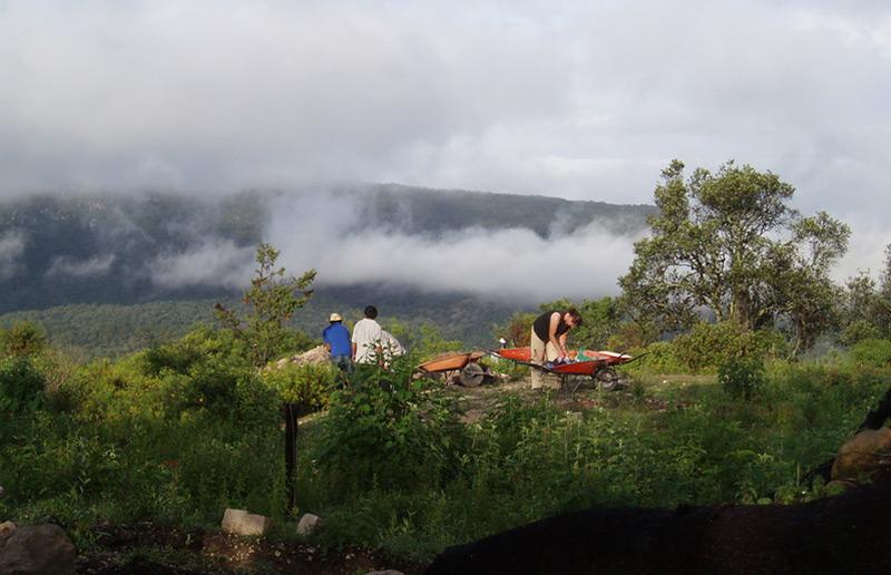 Ausgrabungsstelle in der Stadt Teposcolula-Yucundaa: Archäologen bei der Arbeit