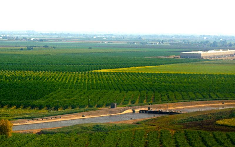 Felder und Äcker: landwirtschaftliche Nutzflächen