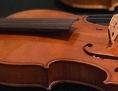 Mycowood-Geigen