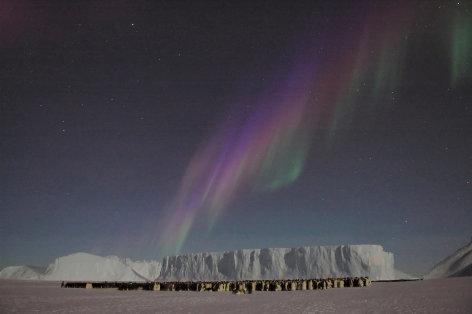Eisige Welten  Im Bann der Polarnacht (5)  Originaltitel: Frozen Planet: Winter