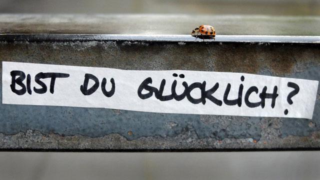 Ein Marienkäfer krabbelt über ein Treppengeländer, auf dem die Frage «Bist du glücklich?» geschrieben steht