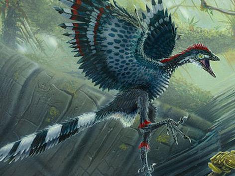 Rekonstruktion: Urvogel Archaeopteryx mit buntem Federkleid