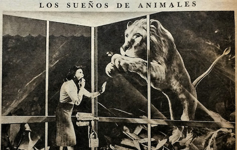 """Illustration eines Traums, der in der Zeitschrift """"Idilio"""" psychoanalytisch gedeutet wurde"""