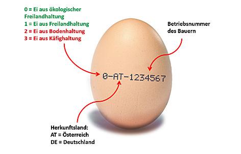 Kennzeichnung von Hühnereiern