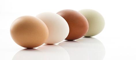 Genrebild Eier