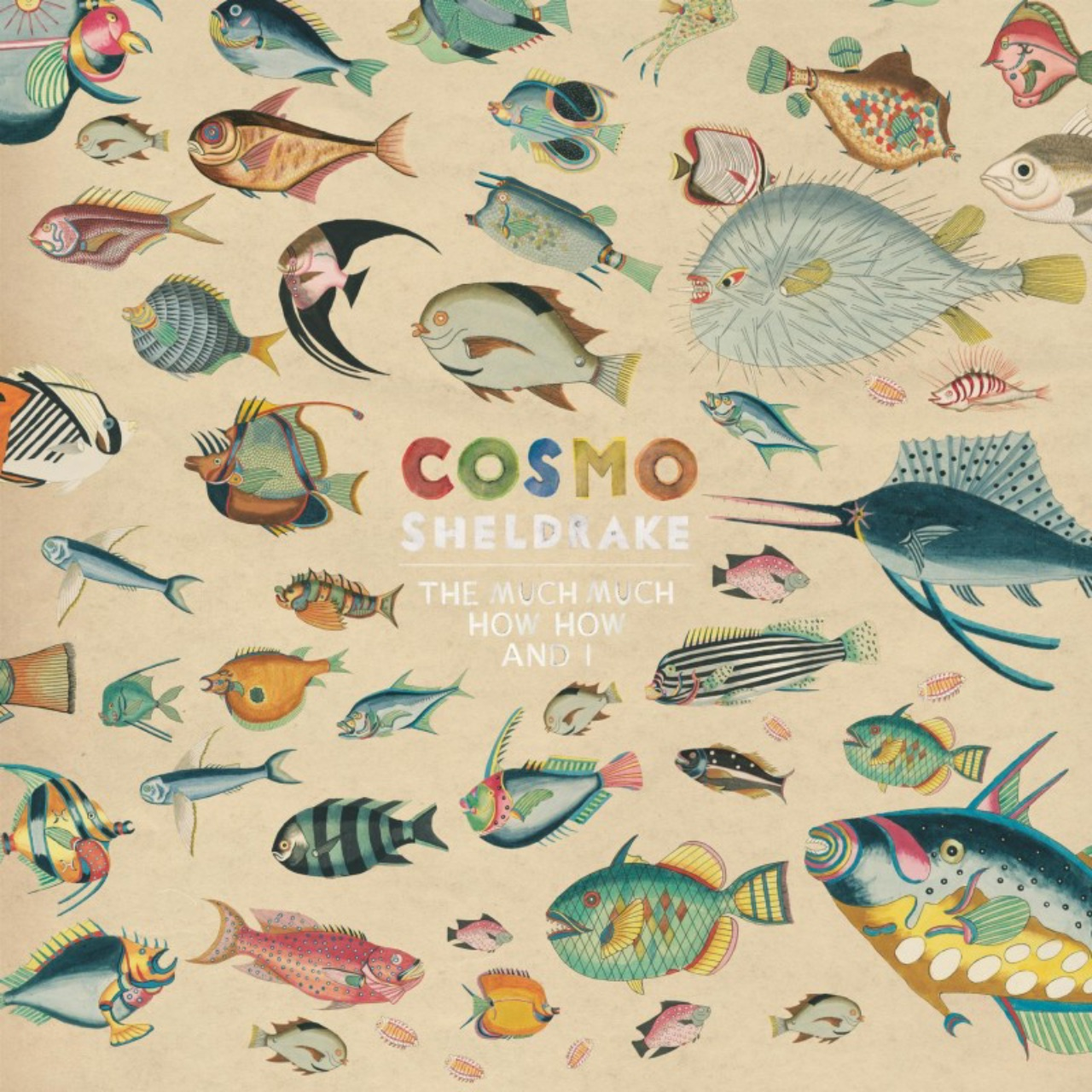 """Cover """"The Much Much How How And I"""" Cosmo Sheldrake"""