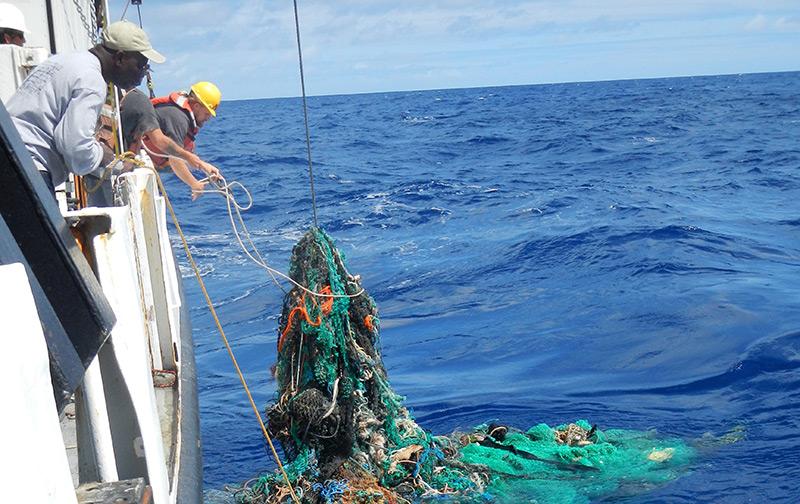 Umweltschützer ziehen Geisternetze aus dem Meer